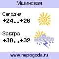 Прогноз погоды в городе Мшинская